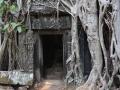 2016.03.29-07.50_-_Cambodge_-_DSC06266