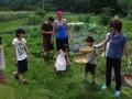 2015.07.25-11.52_-_Japon_-_DSC01348
