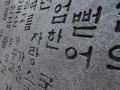 2015.05.29-16.38 - Corée Du Sud - DSC00373