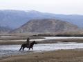2015.04.21-09.36 - Mongolie - DSC08679