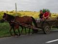 2014.06.28-19.07_-_Roumanie_-_DSC01428