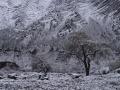 2014.11.08-09.34 - Tadjikistan - DSC05027