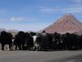 2014.11.18-12.32 - Tadjikistan - DSC05397