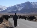 2014.11.18-12.34 - Tadjikistan - DSC05412