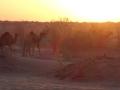 2014.10.14-07.10 - Turkménistan - DSC04435